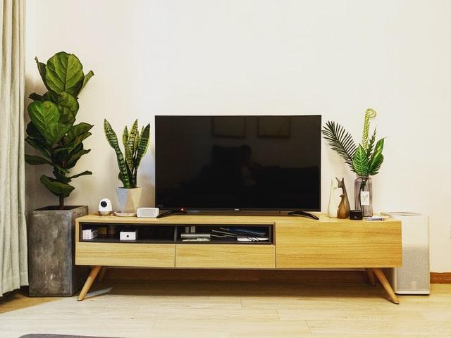 télévision canal +